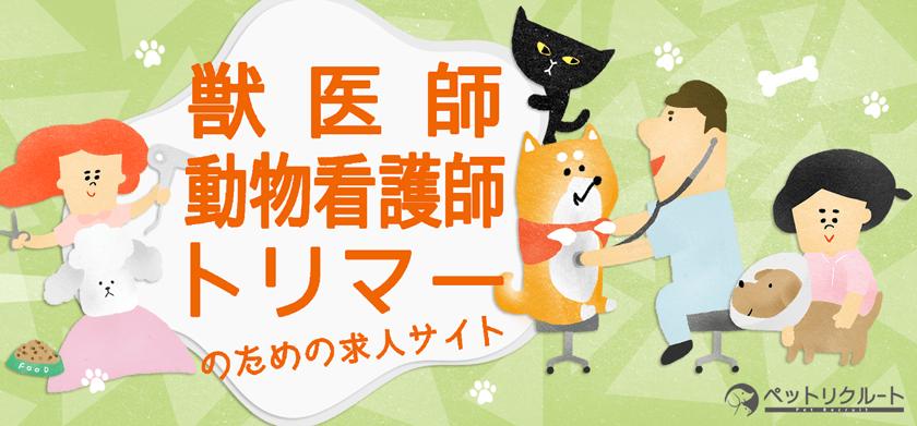 動物病院・ペット業界の求人転職サイト|ペットリクルート