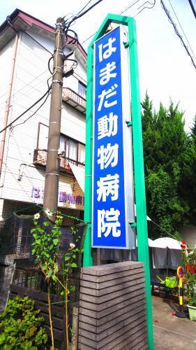 神奈川県相模原市  動物看護師 募集