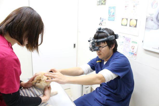 看護師として成長できる職場です。
