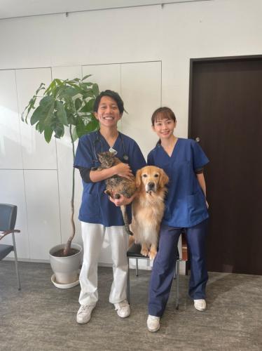 【新規開院】高松市の動物病院 動物看護師募集!