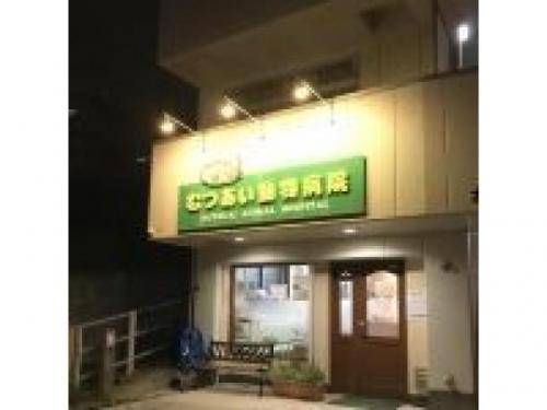 【藤沢市・動物病院】動物看護師さん募集