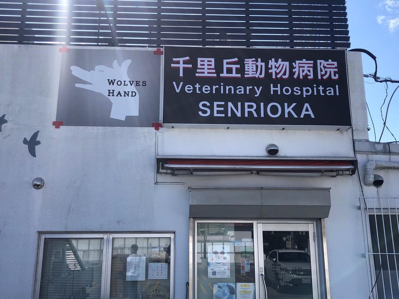 ≪千里丘動物病院≫