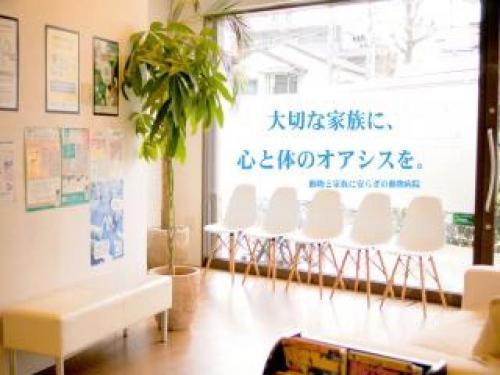 世田谷区のオアシス動物病院★獣医師募集!★