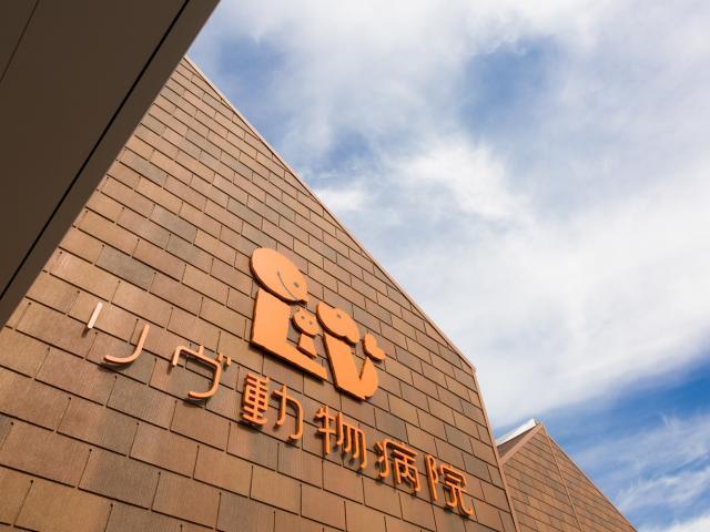 【獣医師パート】週1からOK!福岡県リヴ動物病院