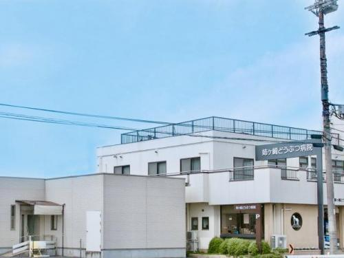 【新卒 動物看護師 募集】千葉県市原市 姉ヶ崎どうぶつ病院