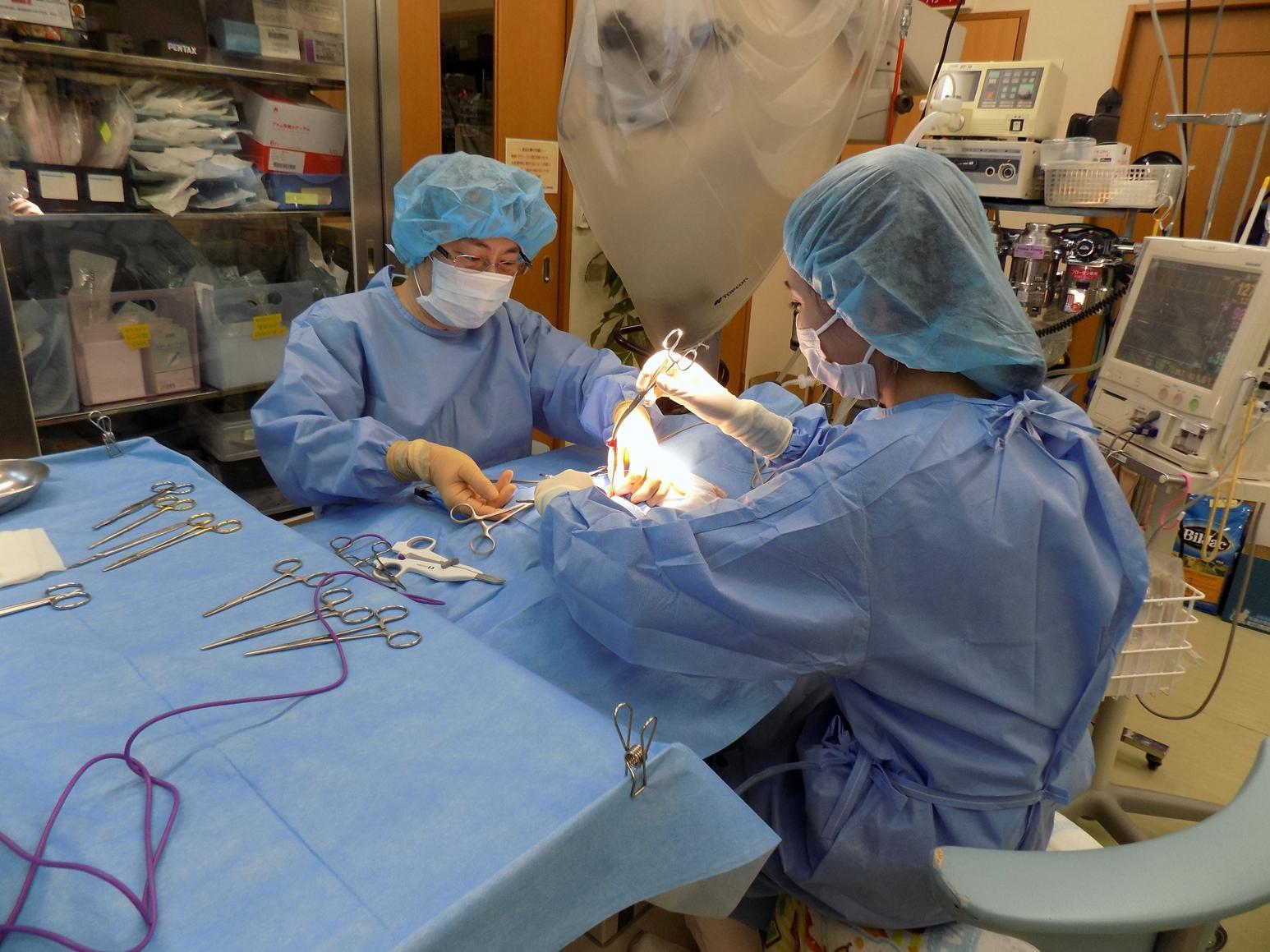 手術中の様子