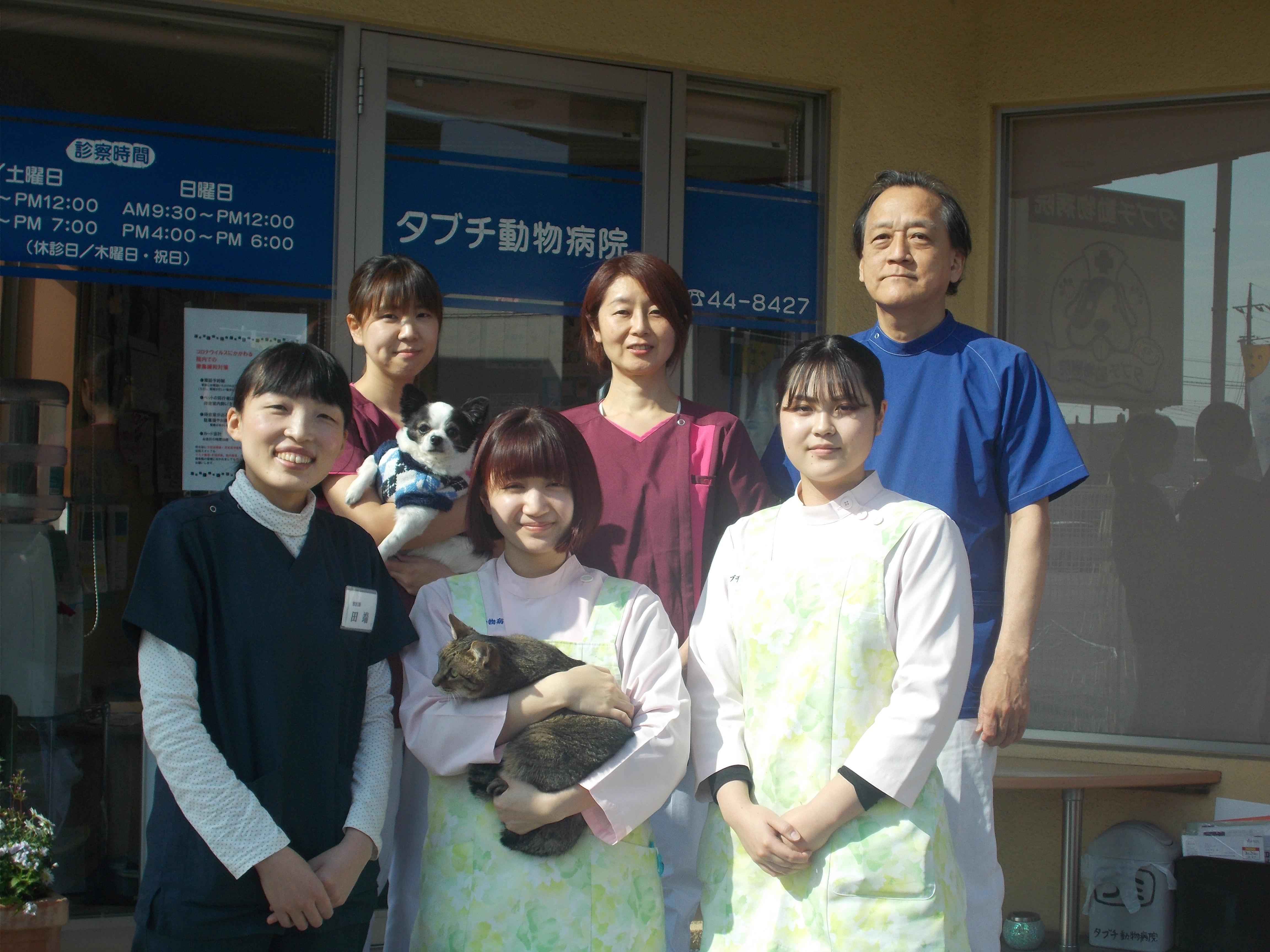 獣医師募集!川越のプライマリーケア タブチ動物病院