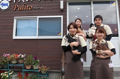 【福島県いわき市】トリマー 募集【さかい動物病院】