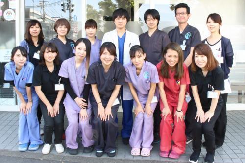 【獣医師急募】大手グループの動物病院で働きませんか?