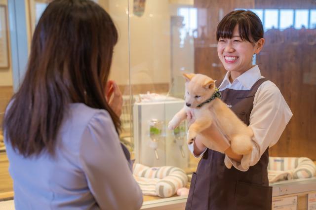 子犬や子猫と飼い主様をつなぐ貴重な経験ができるお仕事!