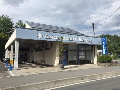 【社保完備】長野県 あさま動物病院 経営企画・事務のお仕事