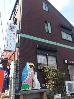 JR中央線東小金井駅からすぐの動物病院にて獣医師募集中です。