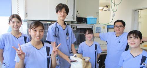 くみ動物病院