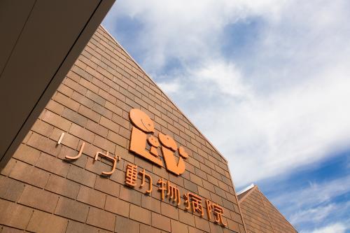 トリマー*シャンプーメイン【福岡:リヴ動物病院】