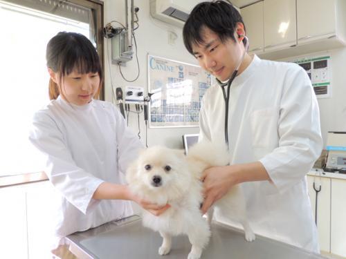 動物看護師募集中【横浜市青葉区・社保完備】