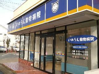 埼玉県八潮市 動物病院 スタッフ募集!