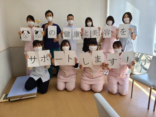 車通勤可!【名古屋市天白区】動物病院 トリマー経験者募集!