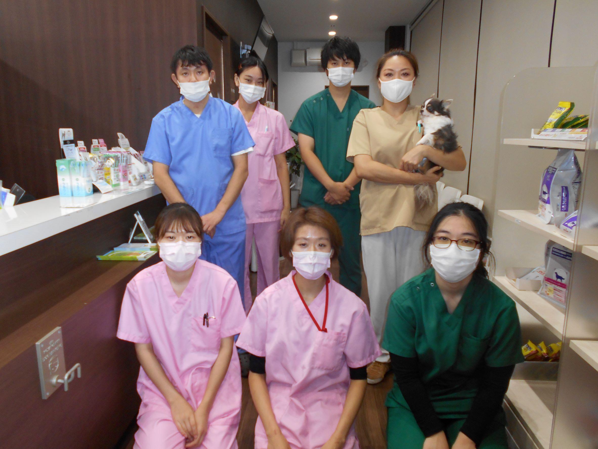 業務拡大につき獣医師募集