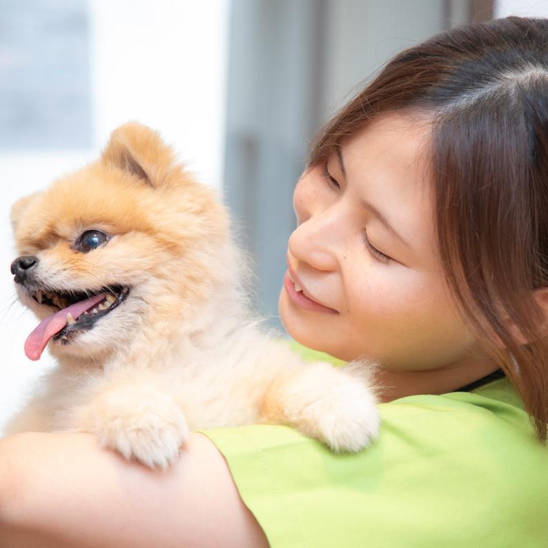 【正社員】動物看護師募集