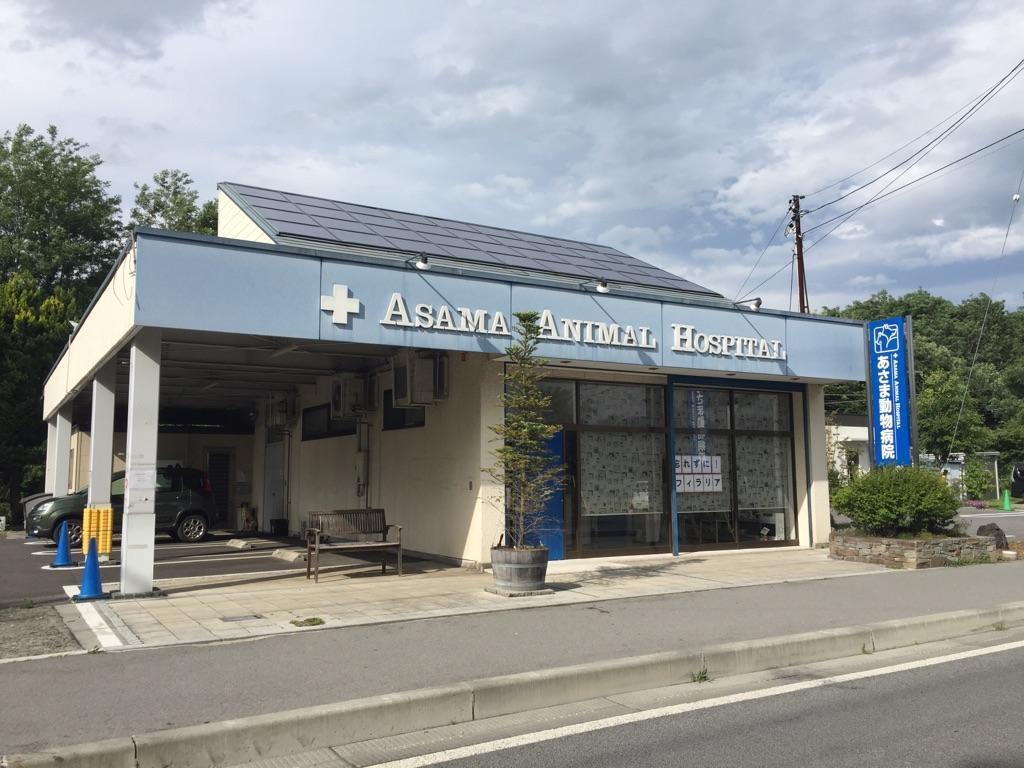 【週2からOK】長野県 あさま動物病院 獣医師募集中!