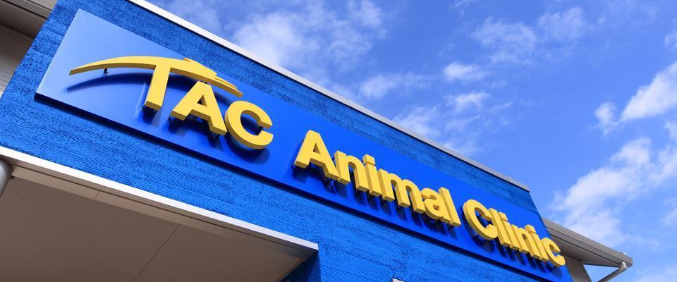 【法律を遵守した労務管理】動物看護師募集 タック動物病院