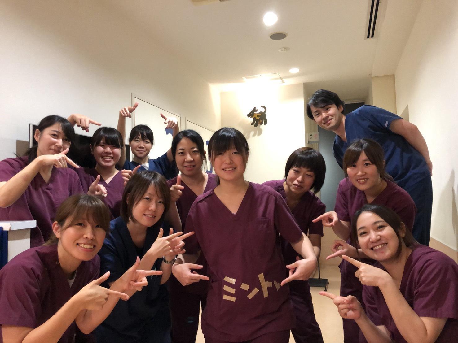 【社保完備】千葉県印西市 杉田動物病院 トリマー募集中!