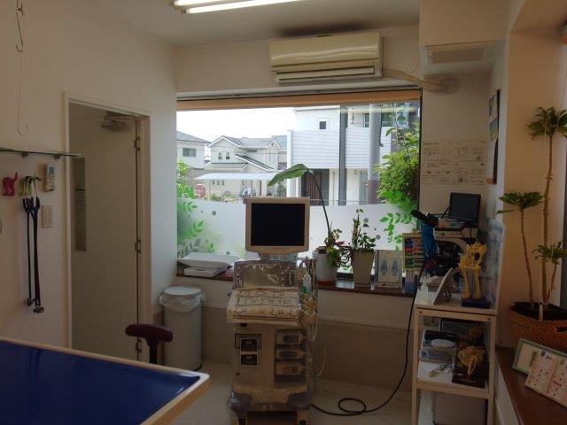 第1診察室(広々した診察室です)