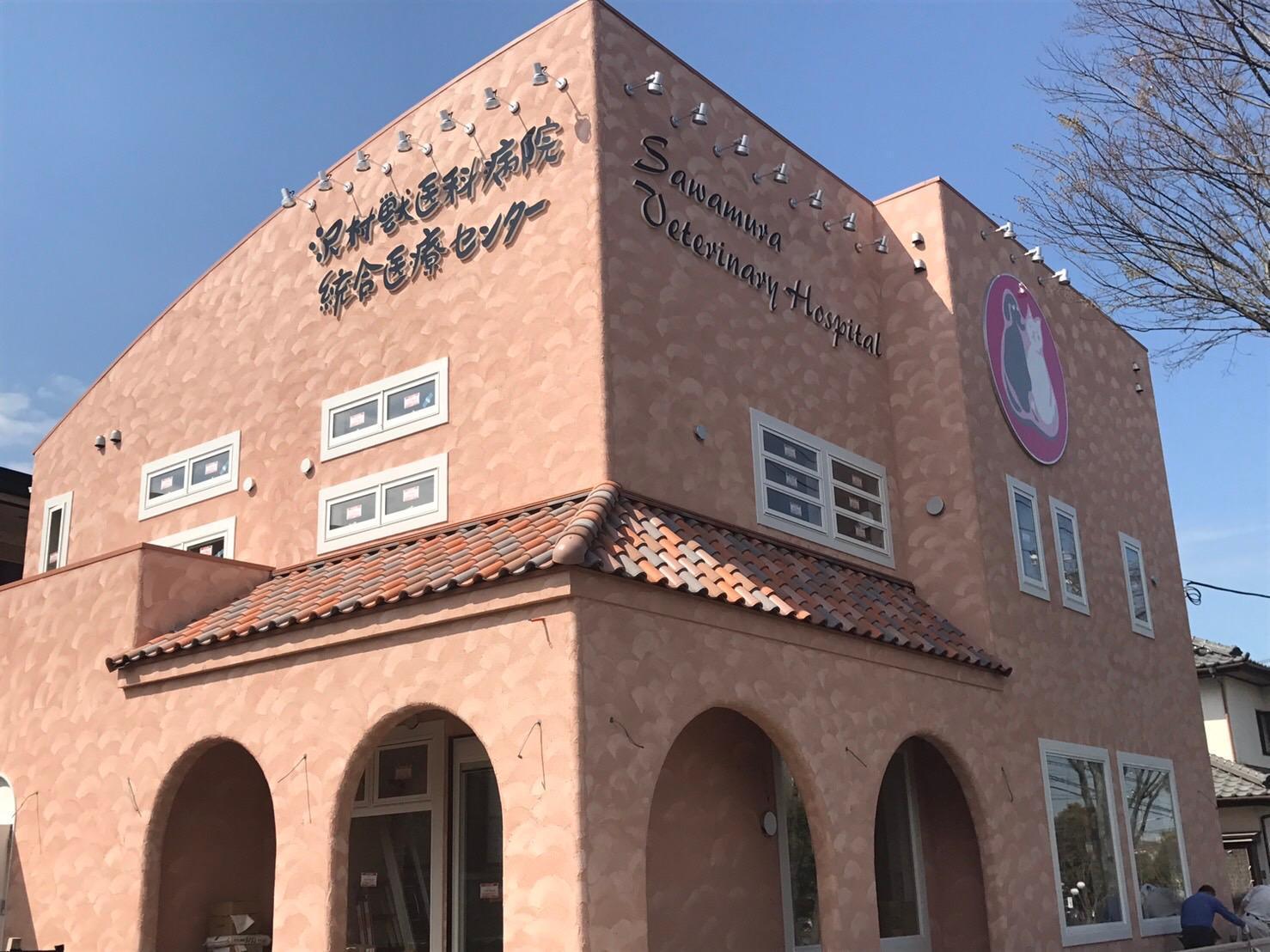 動物統合医療センター(千葉市中央区)と連携をとって質の高い獣医療の提供に努めています