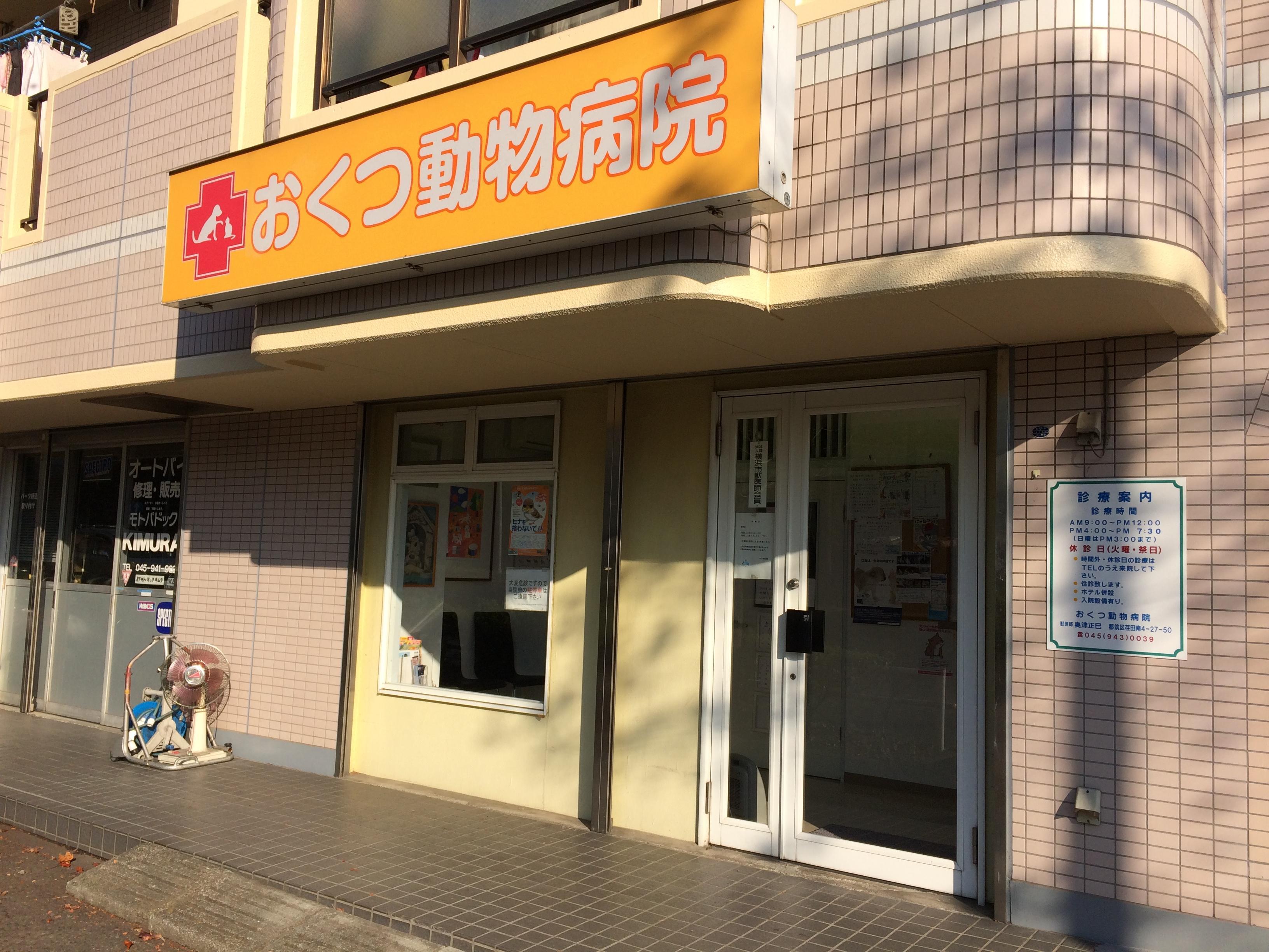 【社会保険完備】横浜市 看護師・トリマー募集中