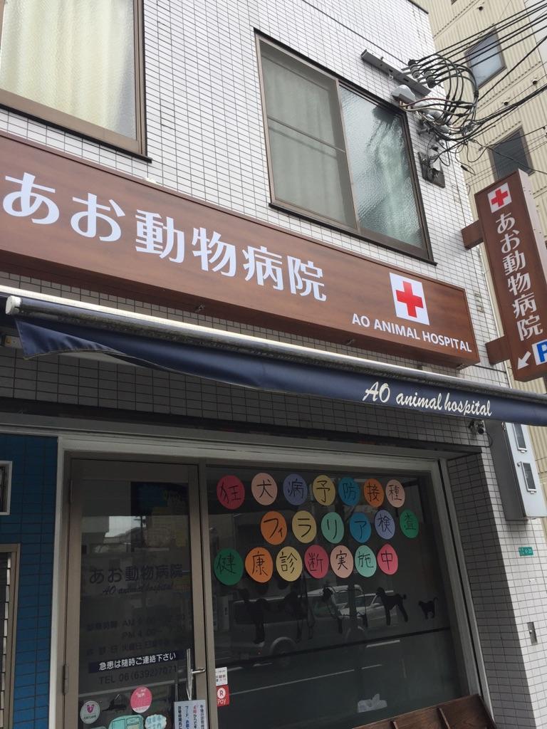 週1からOK! 大阪市あお動物病院 獣医師アルバイト募集!