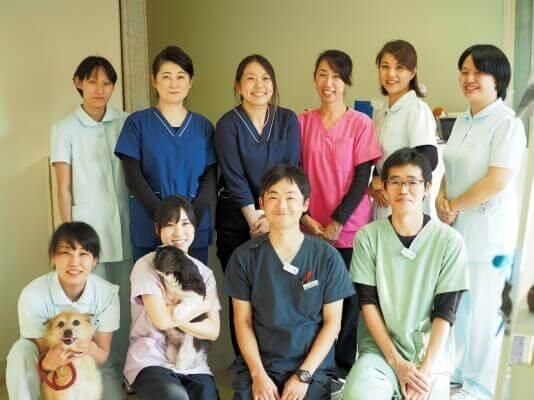 千葉県・動物看護師 社会保険完備