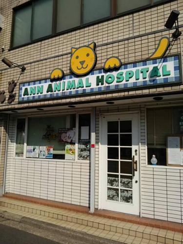 獣医師(パート・アルバイト)を募集しています!