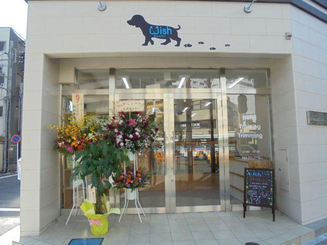川崎区貝塚で新店舗オープン!店長候補トリマーさん募集中!