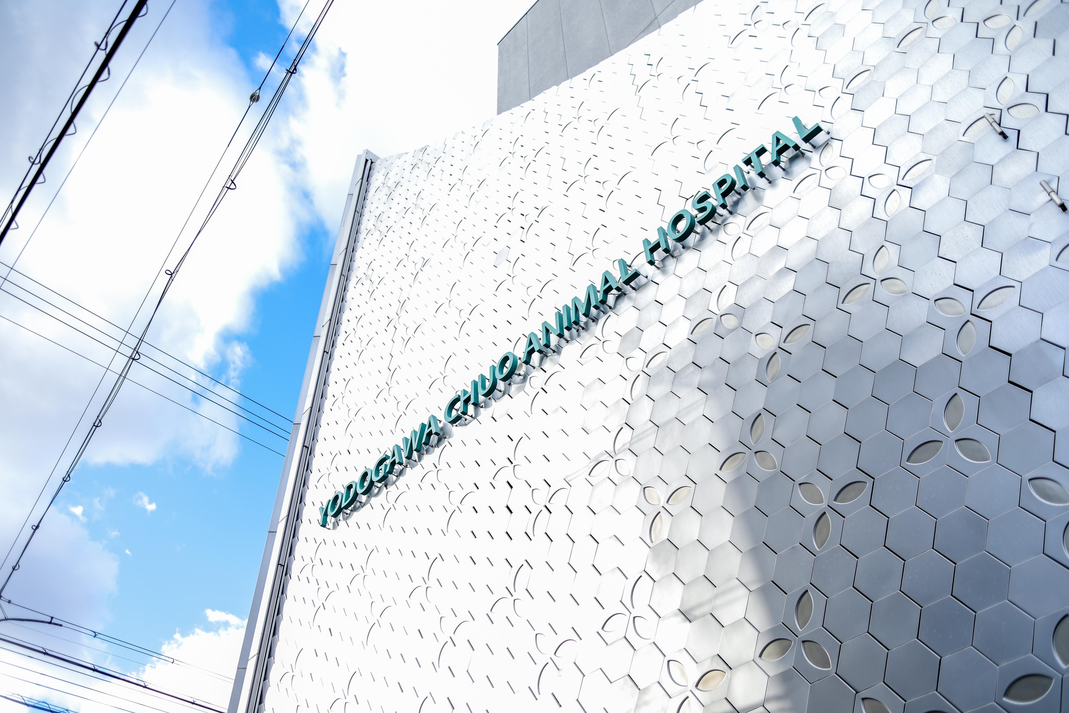 ☆大阪市淀川区・淀川中央動物病院です(獣医師さん募集)☆