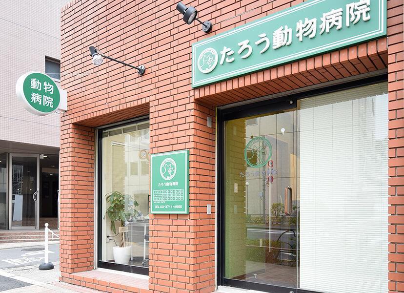 東京都目黒区 動物看護師さん正社員募集