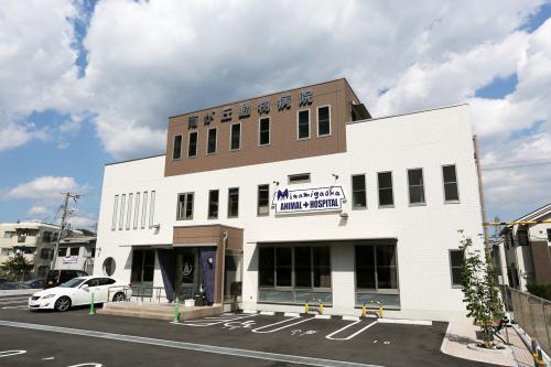 南が丘動物病院  兵庫県三田市 獣医師募集