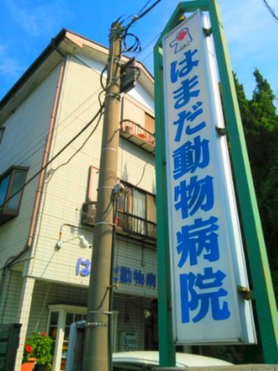 神奈川県相模原市  動物看護師