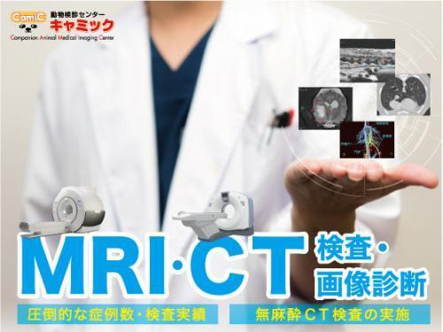 CT・MRI画像診断に興味ある獣医師募集(未経験歓迎)
