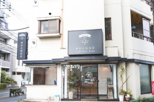 瀬田犬猫病院