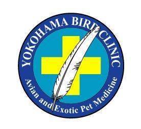 鳥好きの動物看護師募集