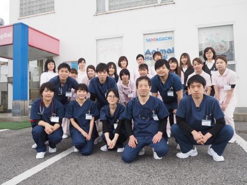 千葉県市原市 動物看護師募集!