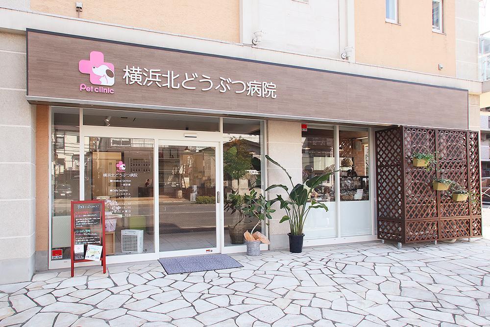 【獣医師募集】横浜北どうぶつ病院