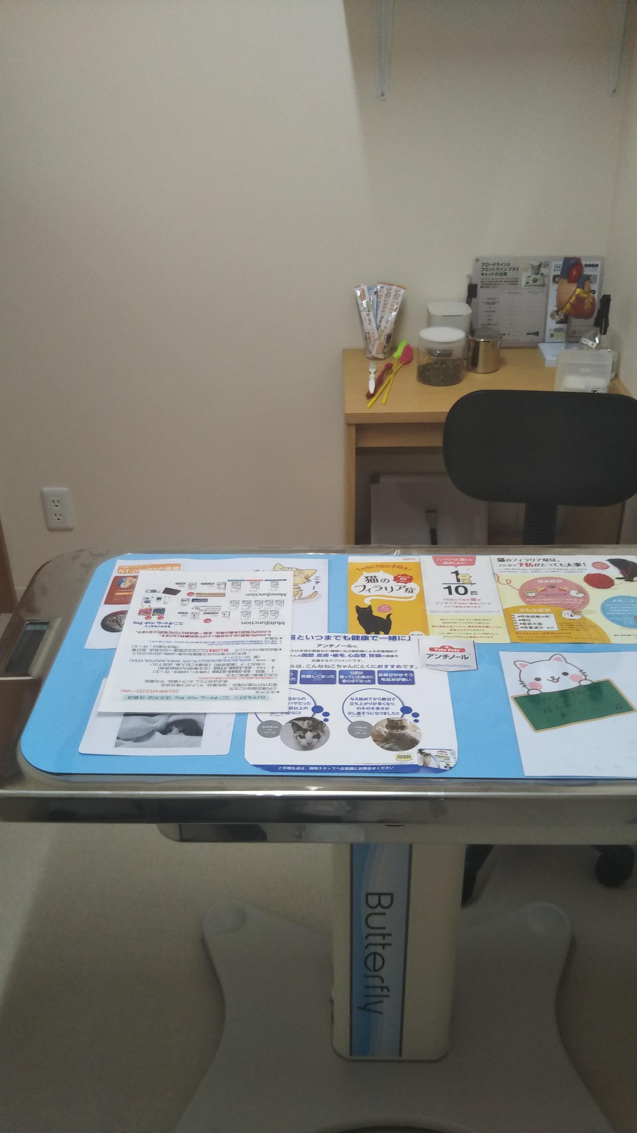 こちらが猫専用の診察室になります