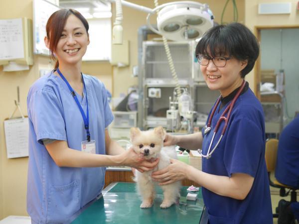 【アニファ動物病院 松戸】アットホームな動物病院です♪
