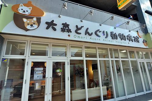 【トリマー急募】大田区 :大森どんぐり動物病院