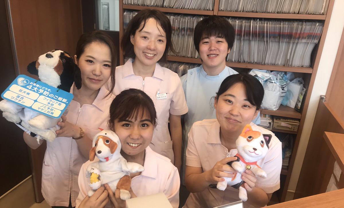 【動物看護師募集】ハル犬猫病院
