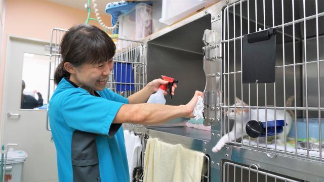 ★レア求人★動物病院の清掃業務✨