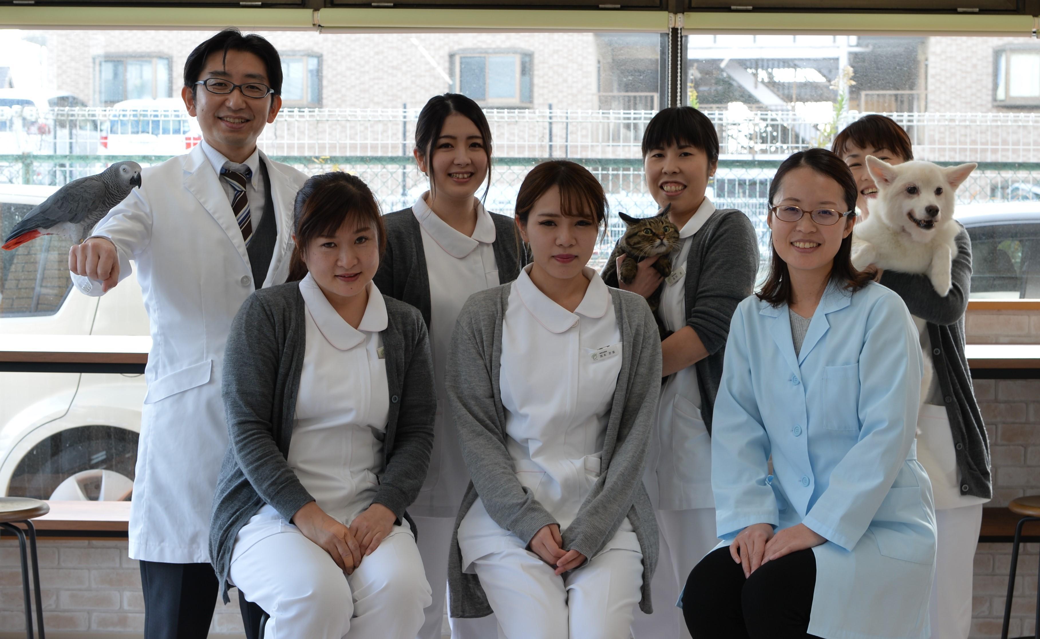 動物看護士募集、正社員