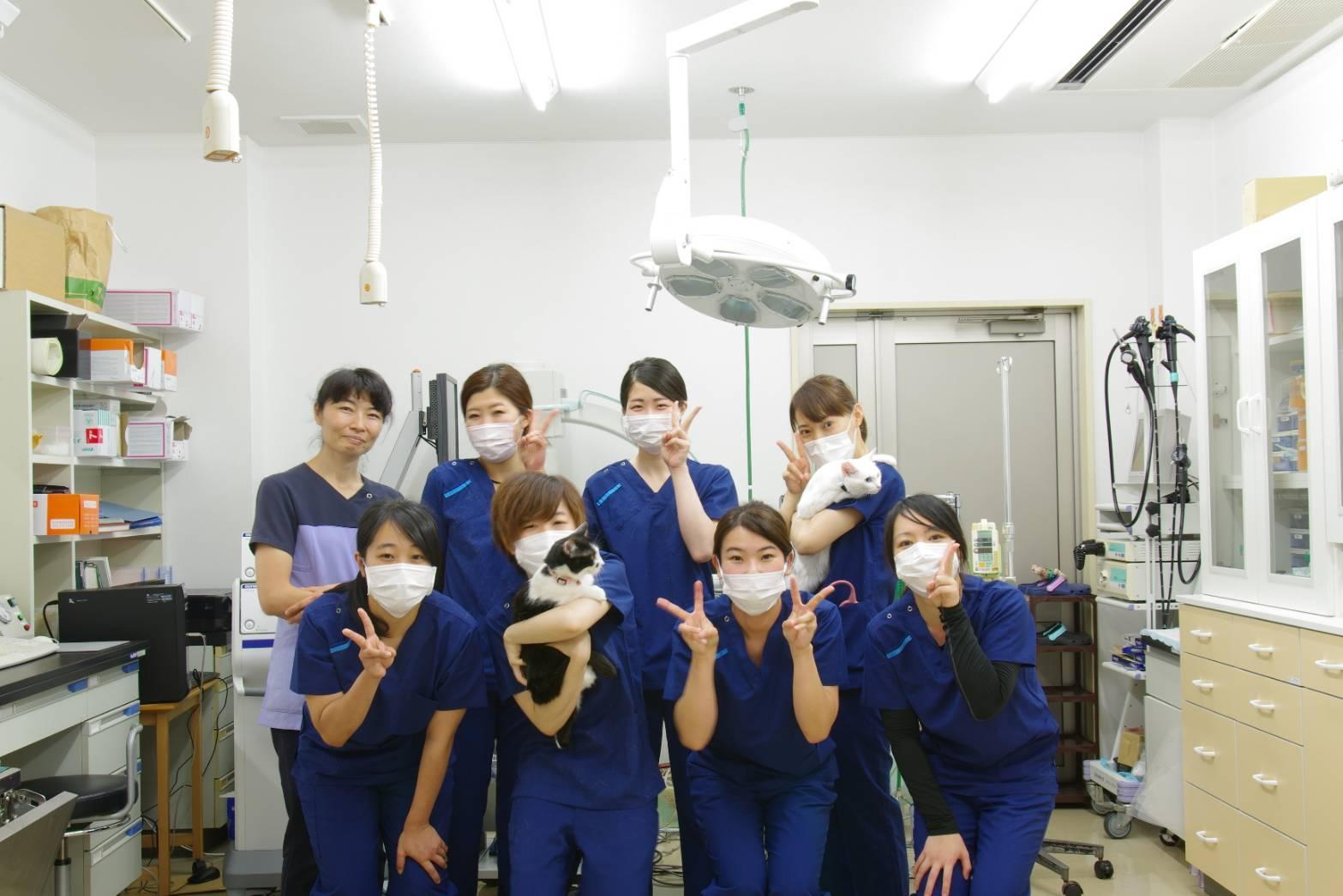 獣医師募集