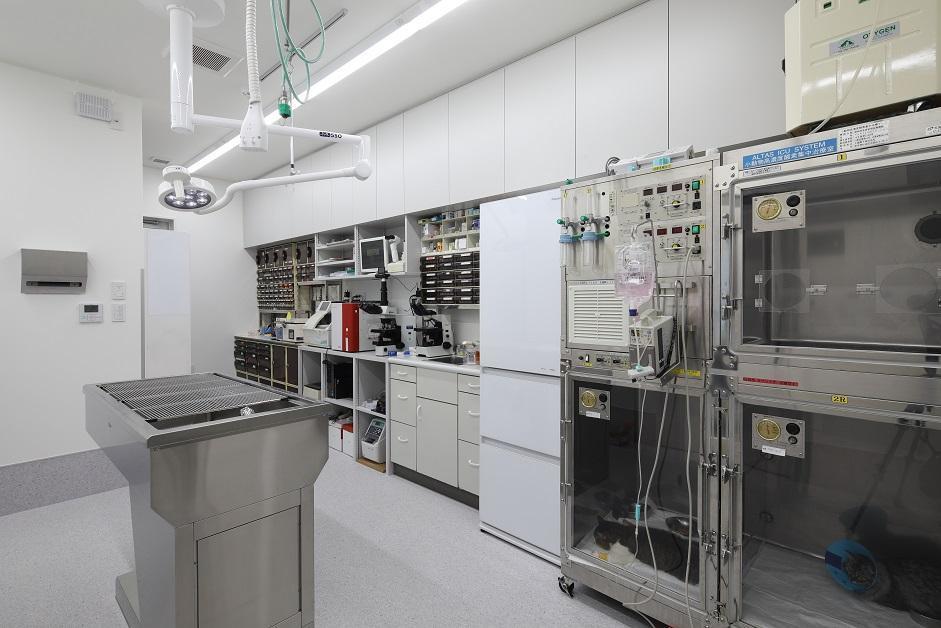 検査処置室&ICU